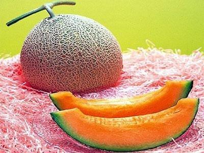 18yubari-melon